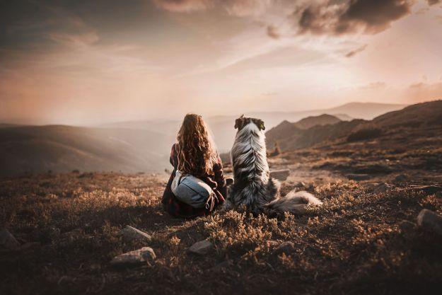 5c07def270675-Mountain-crew-5bfc53478ce00__880 50 Beautiful Photos Of Dogs Taken By Czech Photographer Kristýna Kvapilová Photography Random
