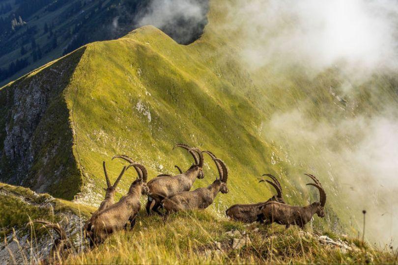 5d03469d8f324 national geographic travel photo contest 2019 5d01f23f872b5  880 - Vencedoras do Concurso de Fotografia de Viagem da National Geographic 2019
