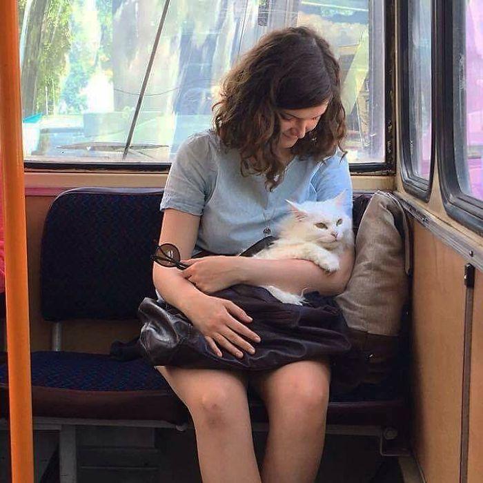 5dc3d4ba5ab42 BNUL5XOgyc8 png  700 - Conta do Instagram compartilha as coisas mais estranhas do transporte público