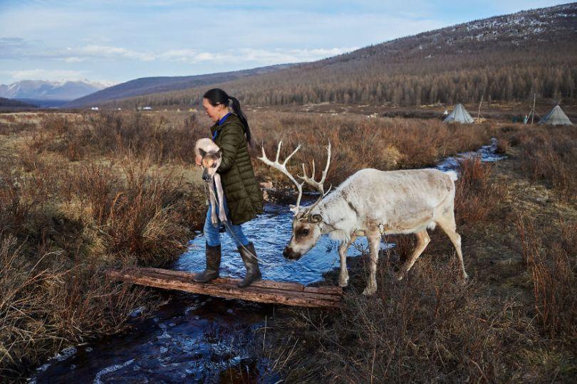 5dce5d2258265 x 5dc9de9f38224  880 - 40 fotografias de Steve McCurry que exploram a relação entre humanos e animais