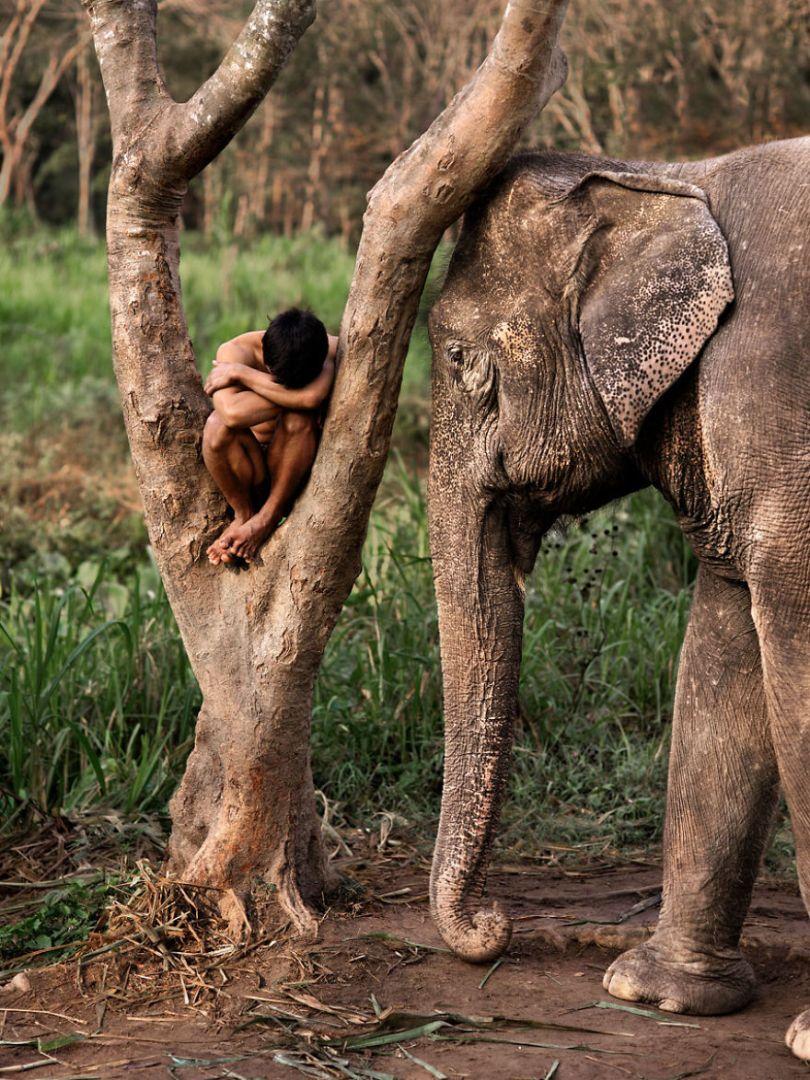 5dce5d23791bf x 5dc9dc510d7d1  880 - 40 fotografias de Steve McCurry que exploram a relação entre humanos e animais