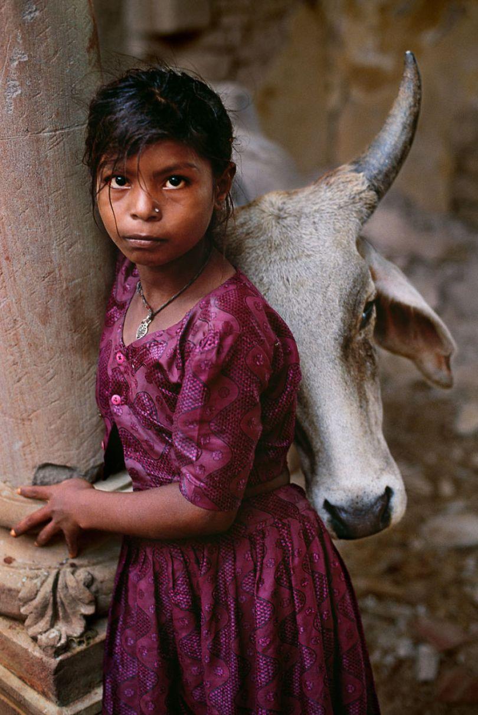 5dce5d246dbe9 x 5dc9d3ad610bc  880 - 40 fotografias de Steve McCurry que exploram a relação entre humanos e animais