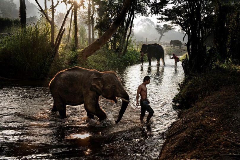 5dce5d26e8df0 x 5dc9d378e92fb  880 - 40 fotografias de Steve McCurry que exploram a relação entre humanos e animais