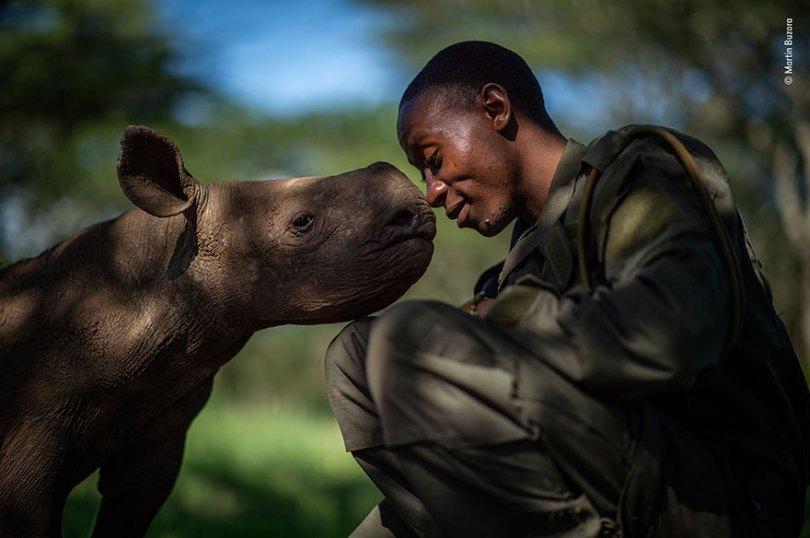 5def5c33aff76 wildlife photographer of the year lumix peoples choice awards 2019 finalists 17 5dee1c783ddc4  880 - Fotos incríveis da People's Choice do concurso de fotógrafo de vida selvagem 2019