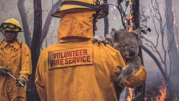 5e1443012c912 5e12f45cba5f1 gunk4ido62941  700 - Internet compatilha 50 fotos que revelam as queimadas na Austrália