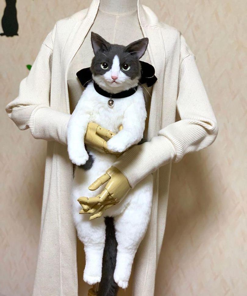 5e577eb6822cf Japanese artist continues to create bags in the shape of cats and realism impresses 5e54ce4a8b175  880 - Artista japonês cria Bolsas de gatos que assustam de tanta veracidade