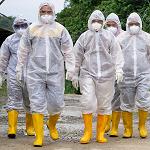 Korona-pandemien viser at nå må norske politikere sette Norge først!
