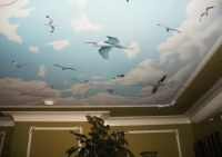 Clouds and birds ceiling mural