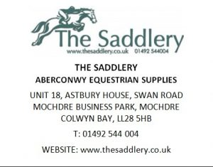 the-saddlery-2