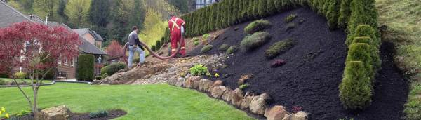 landscape mulch soil green
