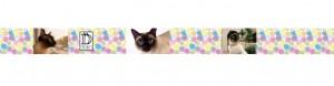 seda estampado con fotos de gato