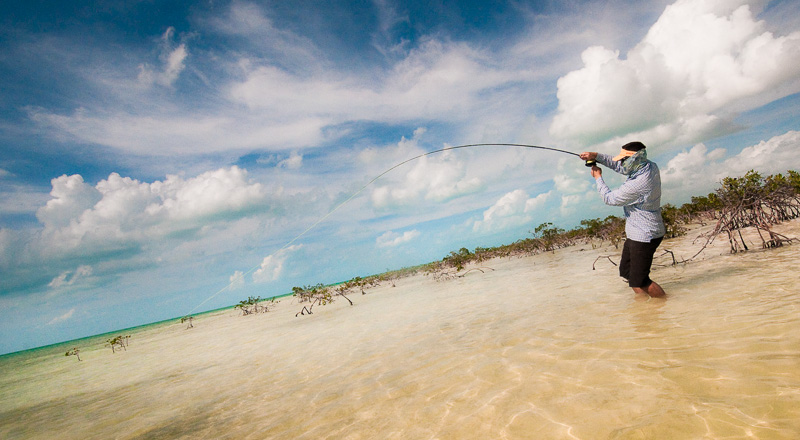 Wading for Bonefish