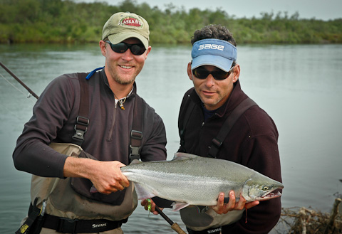 Sockeye Salmon at Alaska West-3