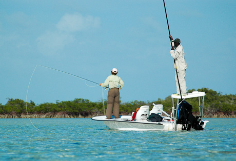 He's not just up there for fun.  Photo: Andros South Staff
