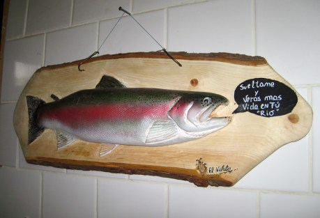 #11: Talking trout?