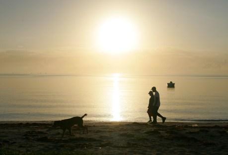 Beach, boat, sun, dog.  Any questions?  Photo: Ric Fogel