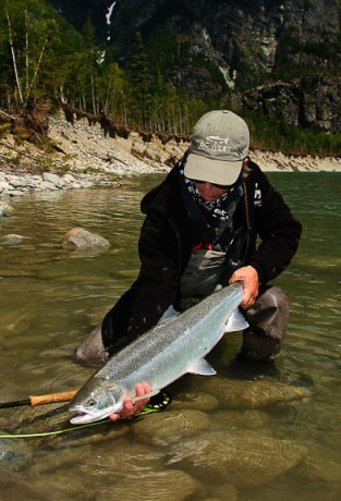 Steelhead - read all about 'em.  Photo: Adam Tavender