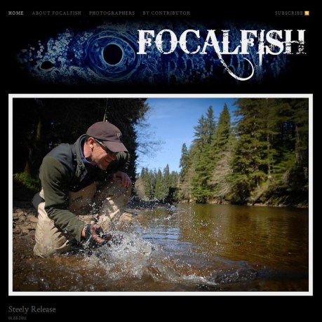 Focal Fish-1