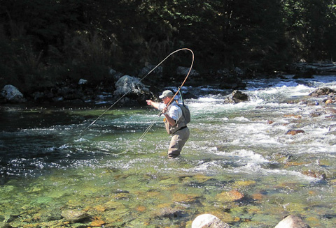 Landing Trout in Chile