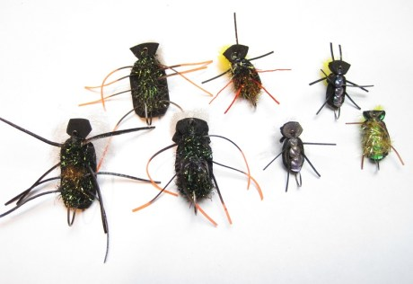 Cantaria Beetle Selection