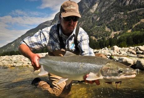 Horatio Steelhead