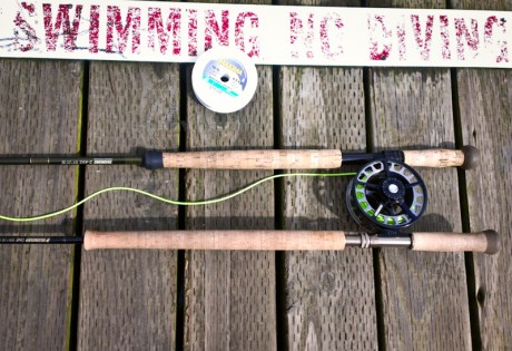 Sage ONE Spey Review