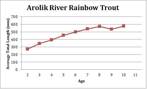 Arolik Rainbow Chart