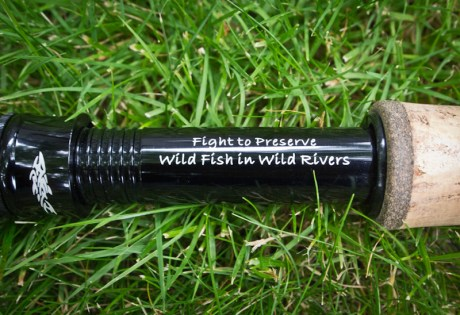 Fight to Preserve Wild Fish