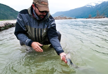 Steelhead Release by Louis Cahill Photography