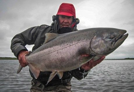 King Salmon Abshagen
