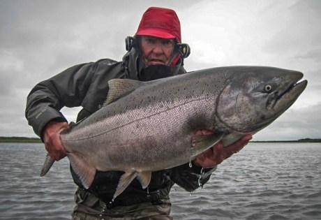 King Salmon Abshagen