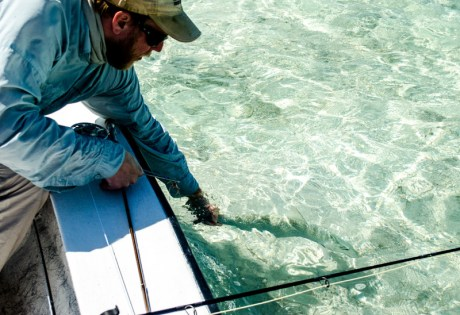 Load Your Bonefish Rod