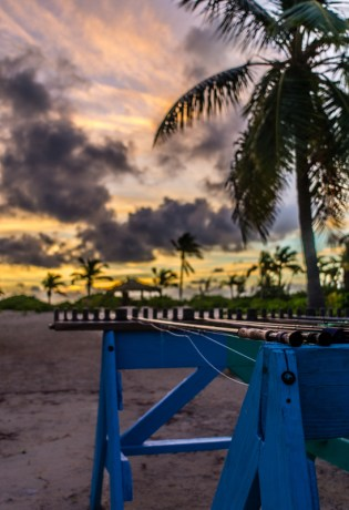 Rods at Sunrise