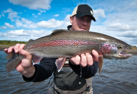 Rainbow Trout Posts
