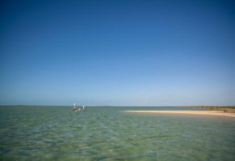 South Andros Island Bonefishing Flats