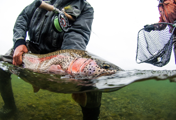 Spey Fishing for Trout