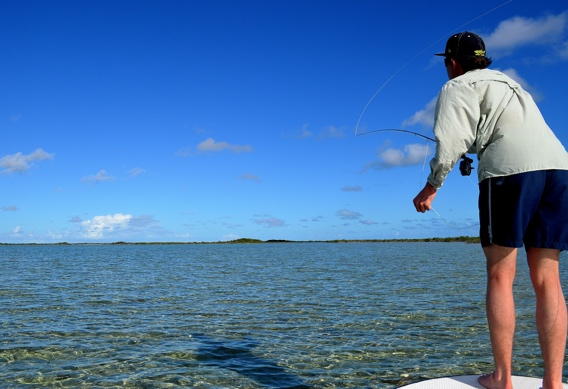 Fly casting for bonefish.