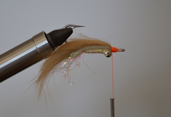 How to tie the Bonefish Scampi, a fly pattern for bonefish.