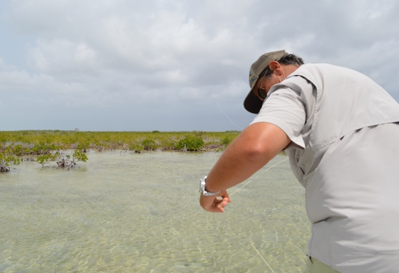 Fly fishing for bonefish, avoiding tangles.