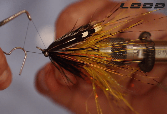Cascade Intruder Fly Tying Video.