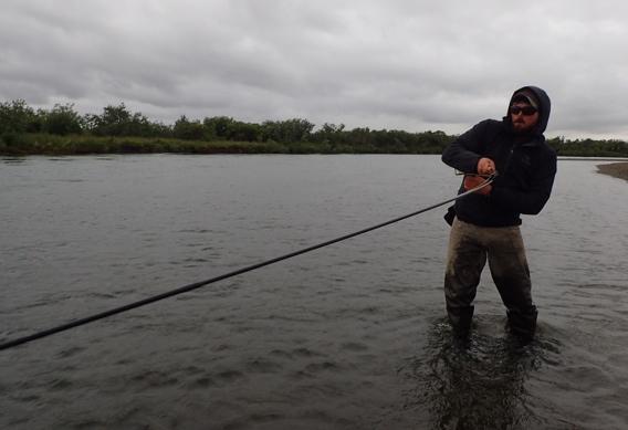 Fighting king salmon at Alaska West