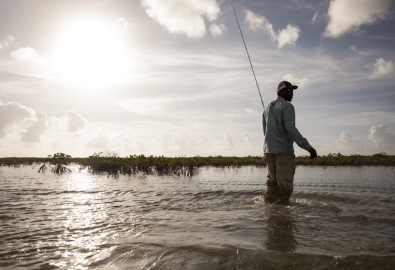Wading for bonefish by Hollis Bennett