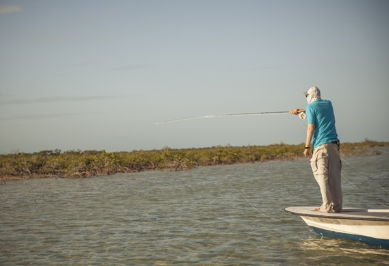 Pointing out bonefish by Hollis Bennet