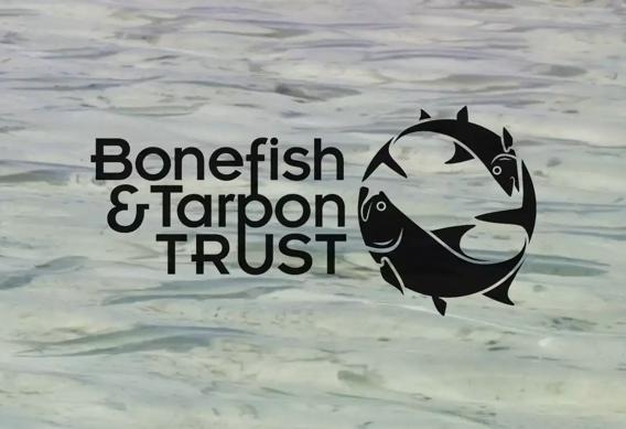 Bonefish and Tarpon Trust bonefish handling practices video