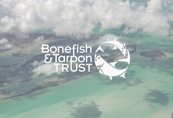 BTT on Bahamian Bonefish Habitat