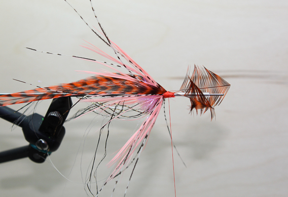the stain remover - steelhead fly tying instructions