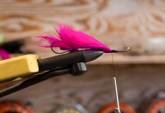 How to tie Cole Cook's Big Poppa fly for salmon