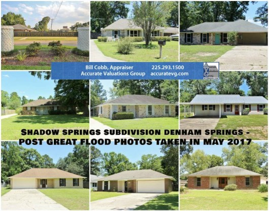 shadow-springs-denham-springs-post-flood-photos-2017