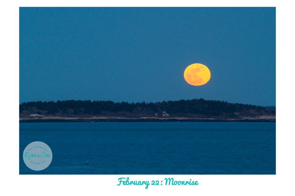 Feb 22 Moonrise