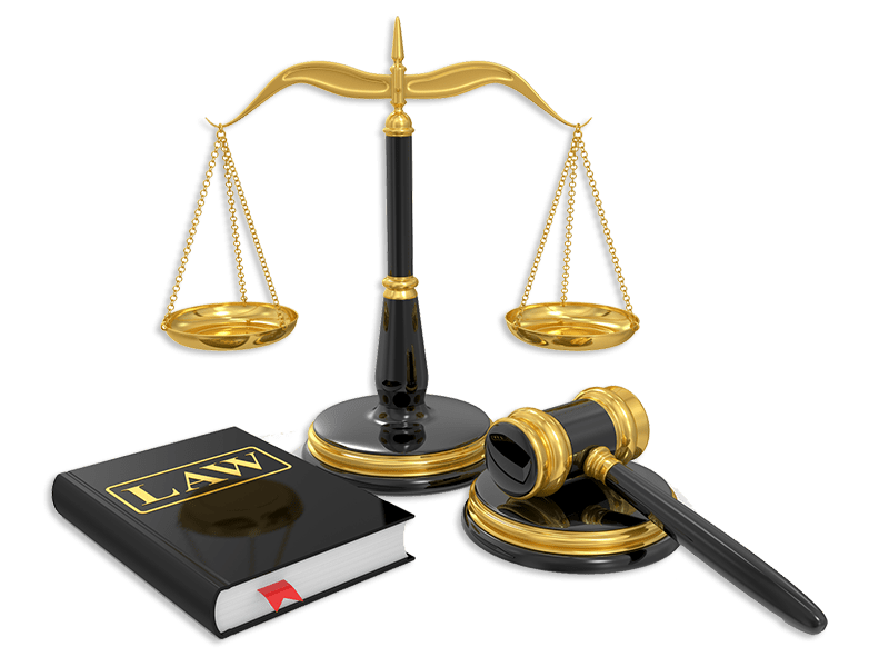 medical legal nurse consulting